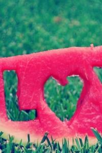 Vorschau Wassermelone Liebe Handy Logo