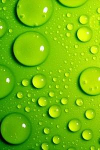 Vorschau Grüne Blasen Handy-Logo