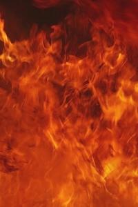 Vorschau Feuer Handy Logo