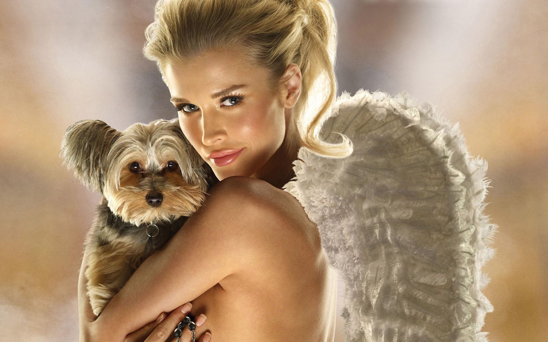 Engel Mit Welpen Handy Logo Kostenlos Hintergrundbild Auf Dein Handy